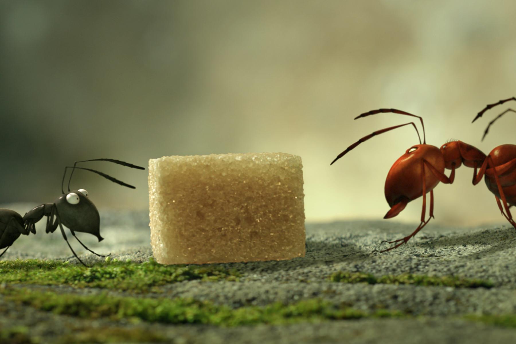 Minuscule vallee fourmis perdues szabo giraud